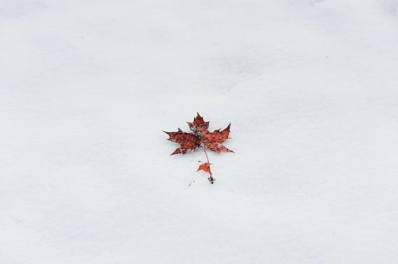 winter-1989807_640